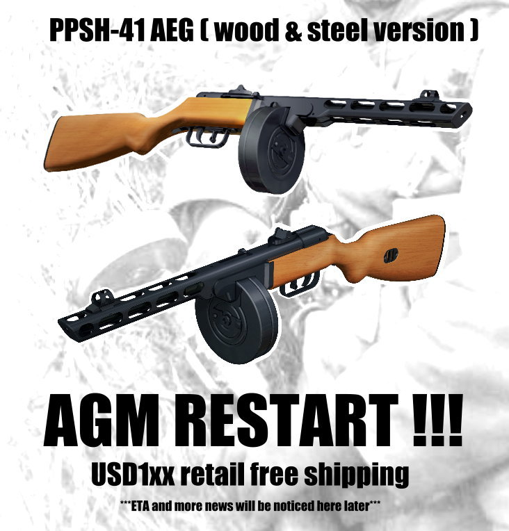 AGM: PPSh-41 Stupid%20ares